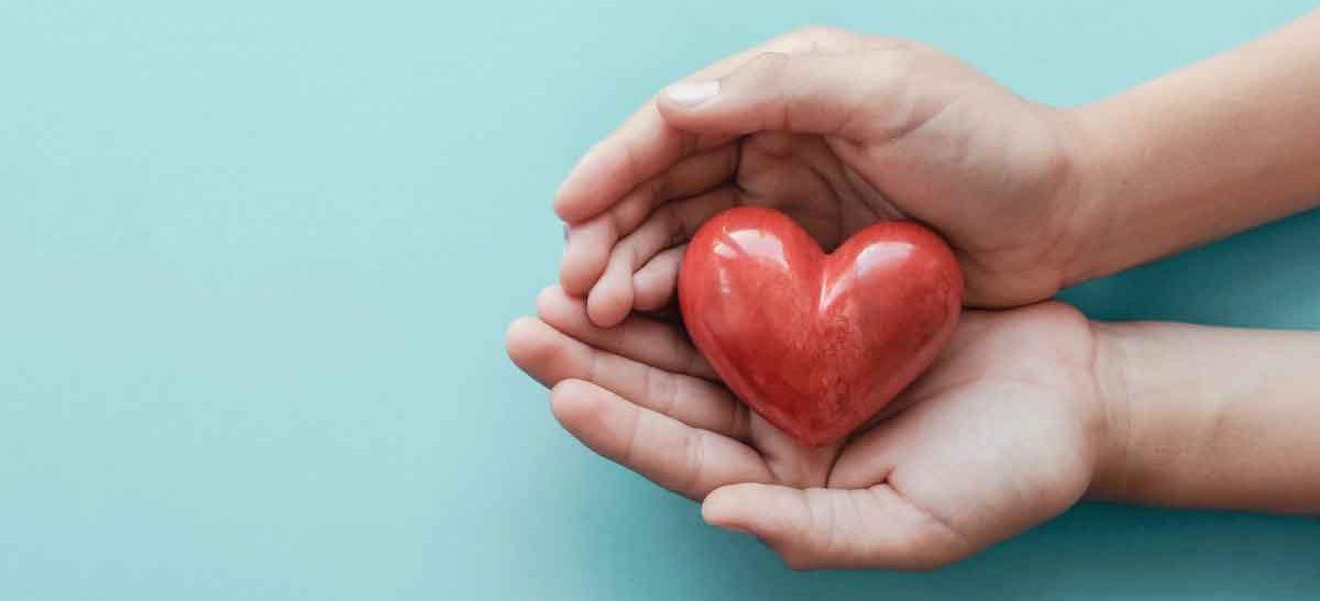 Heart in hands image